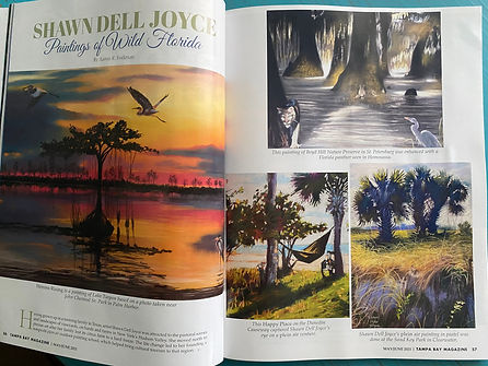 Tampa Bay Magazine 1.jpg