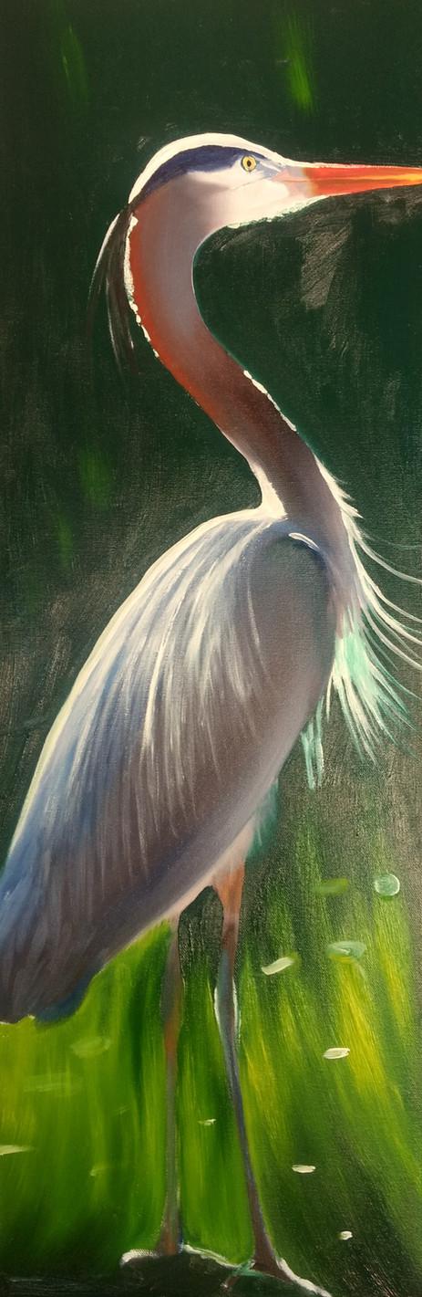 Heron 12x36 Oil Right.jpg