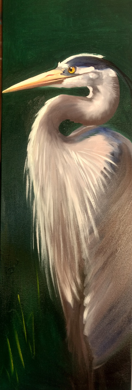 Heron 12x36 Oil Left.jpg