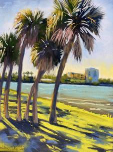 Maximo Park Palms.heic