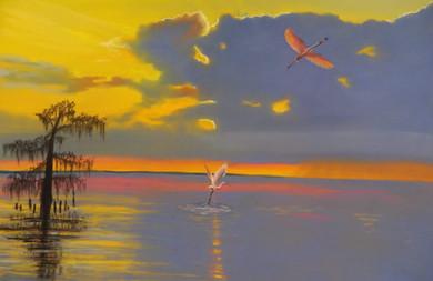 Roseate Sunset.jpg