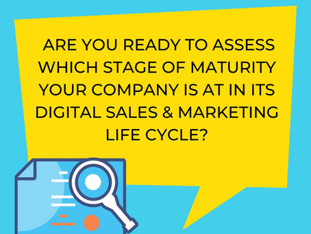 Which Stage of Maturity is your Company at in its Digital Sales & Marketing Life Cycle?