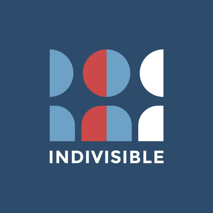 indivisibleLogo.jpg