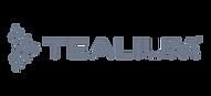 partner logos grey_Tealium.png