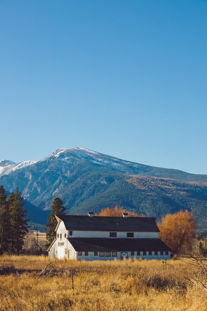 Montana_2019-5.jpg