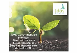 How did TDAS' begin?
