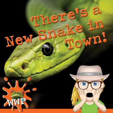 There's a New Snake in Town!