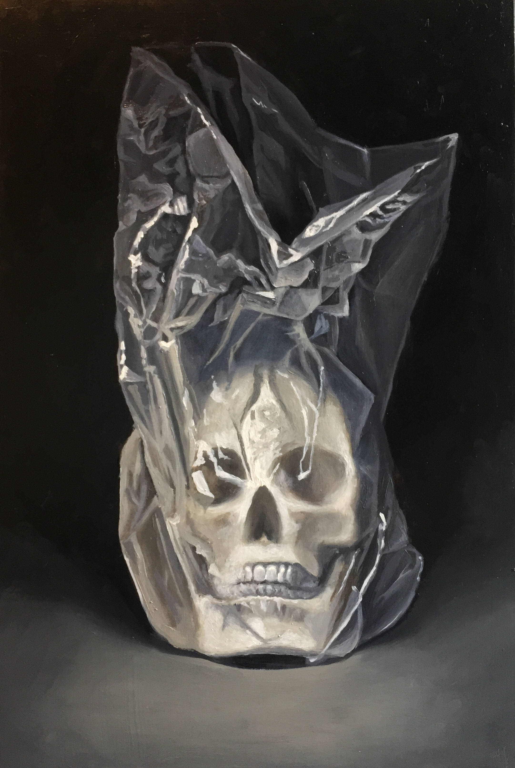 Skull in Plastic Bag