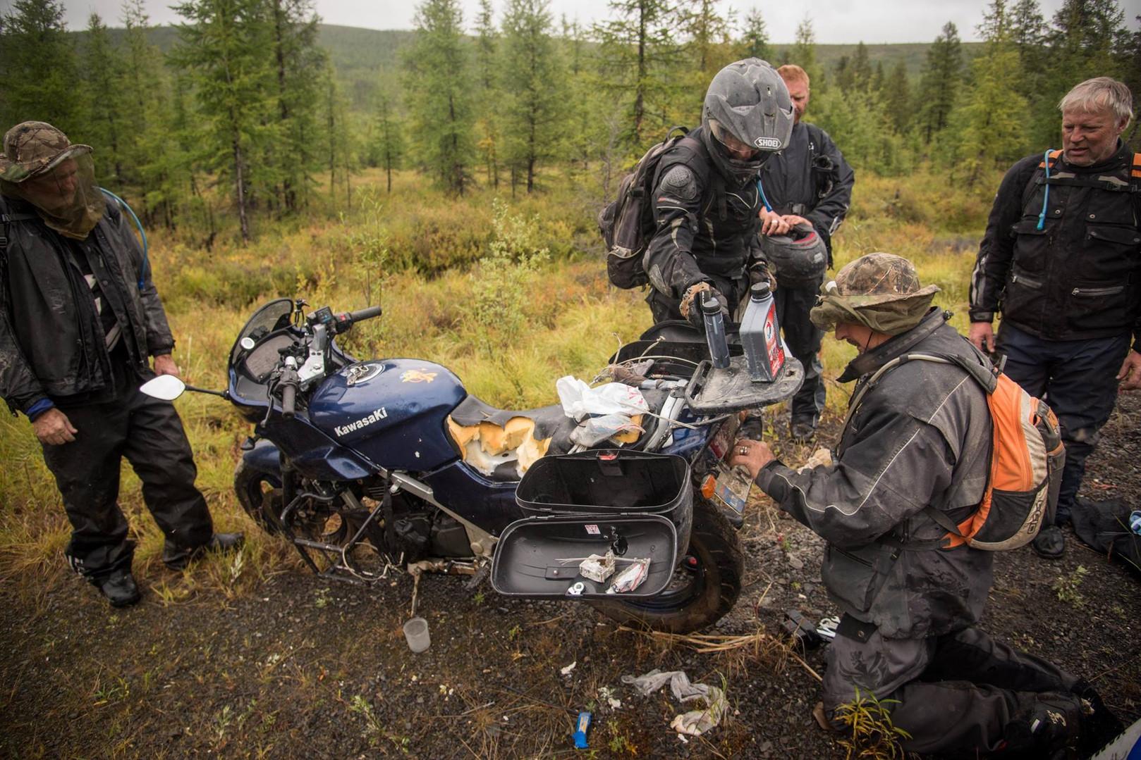 bears moto tours