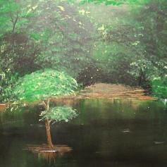 Summer's End Swamp
