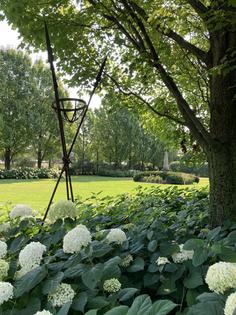 And Peek into the Summer Garden