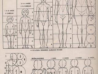Proporção do Corpo Humano
