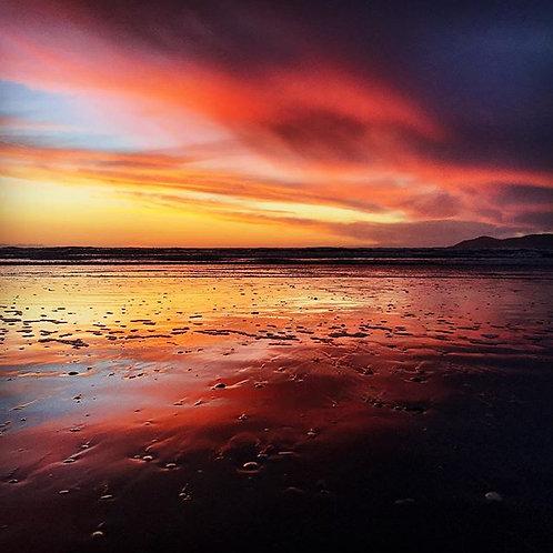 """A4 """" Beach Bloom Lens Zoom"""""""