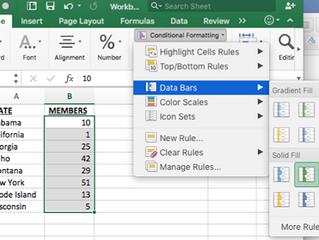 Data Bars for Preliminary Analyses