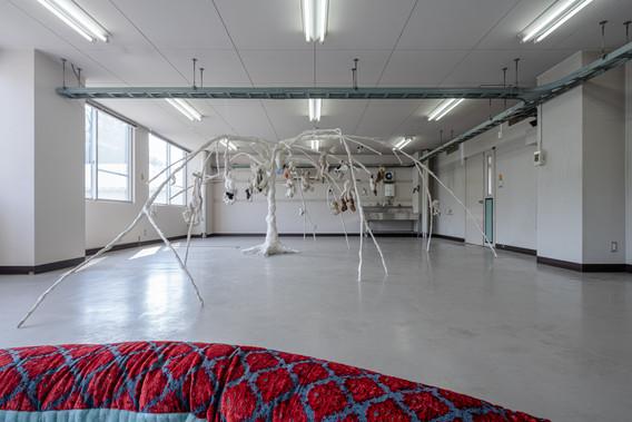 182 DSC08660 ToLoLo studio.jpg