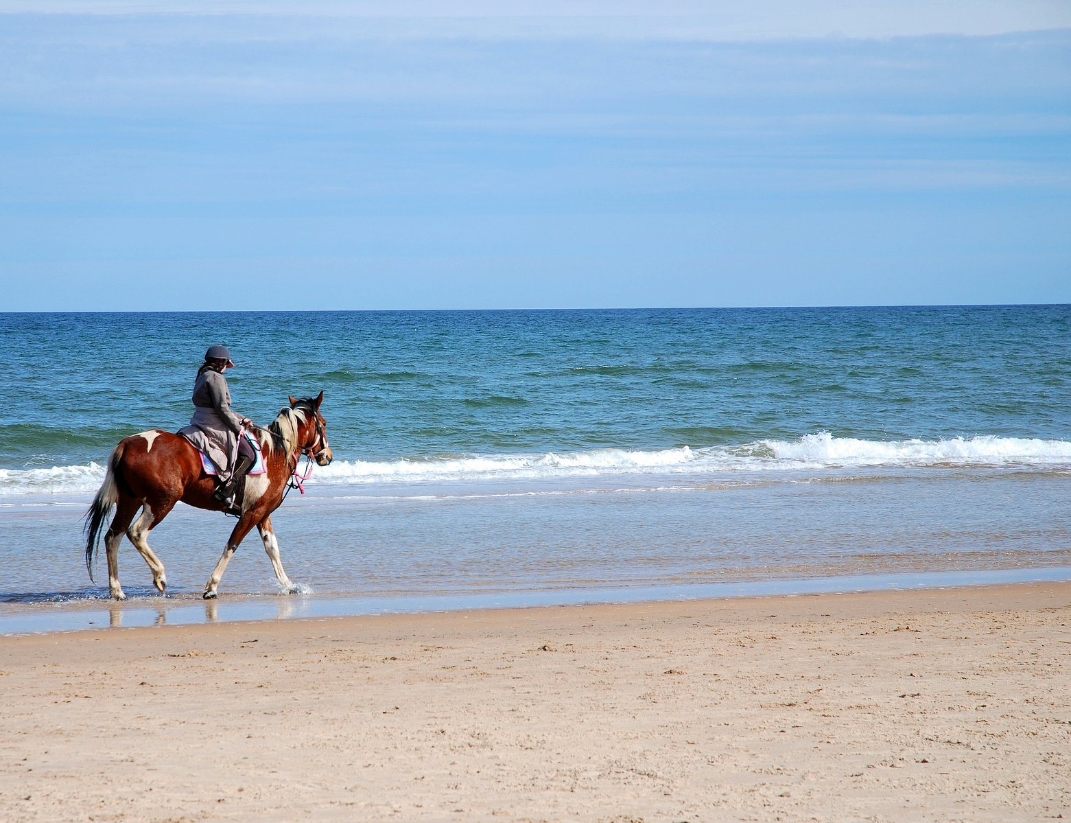 horse-1344735