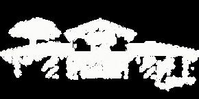 logo blanc transparent.webp