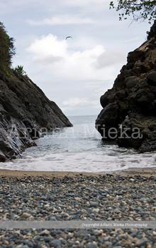Turtle Beach 1