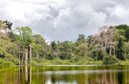 Les pays africains classés selon l'indice de performance environnementale 2020 (IPE)