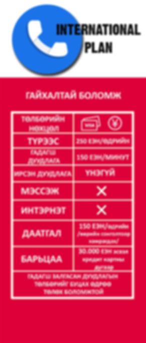 international plan template mongolian.jp