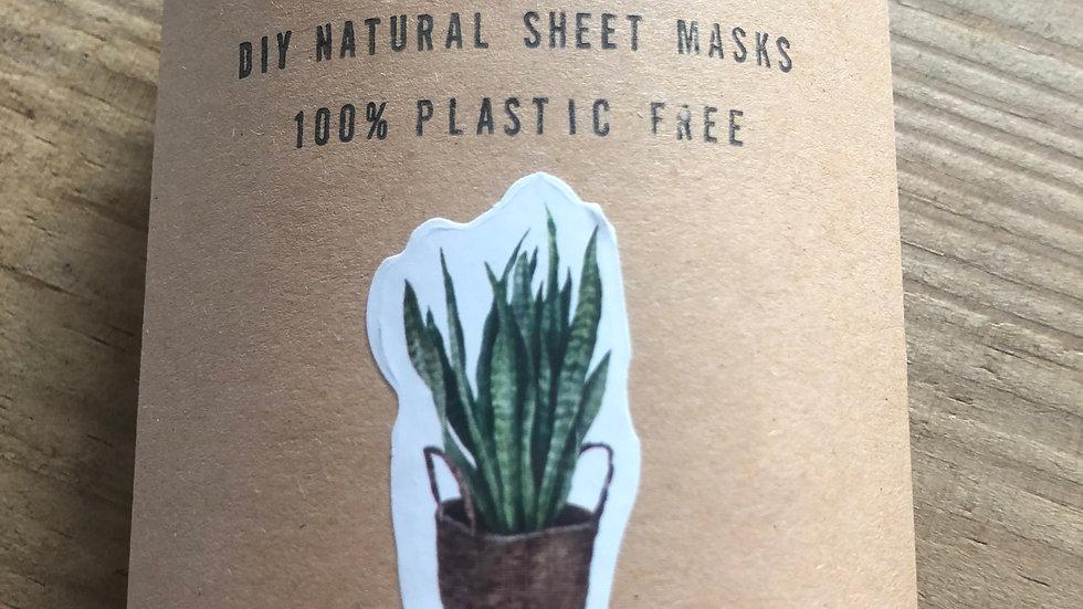 DIY Natural Sheet Masks