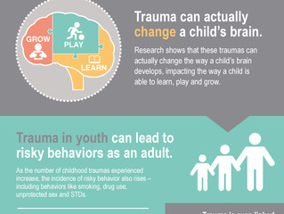 Trauma informed what?