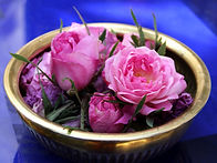 moroccan-rose.jpg