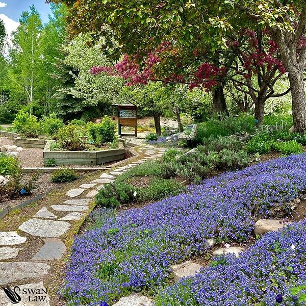 Botanic Park 2.jpg