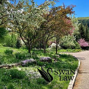 Botanic 4.jpg