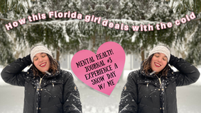 Floridian lives in New England, How to Deal with Snow