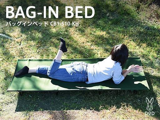DoD sleeping bed