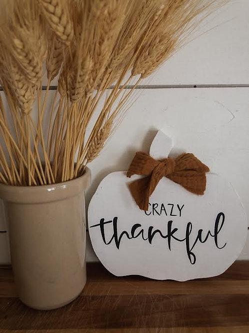 Crazy Thankful 8 in Pumpkin
