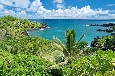 Hawaii-Paradise-On-Maui-Island.jpg