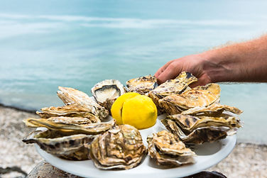 Oysters-France.jpg