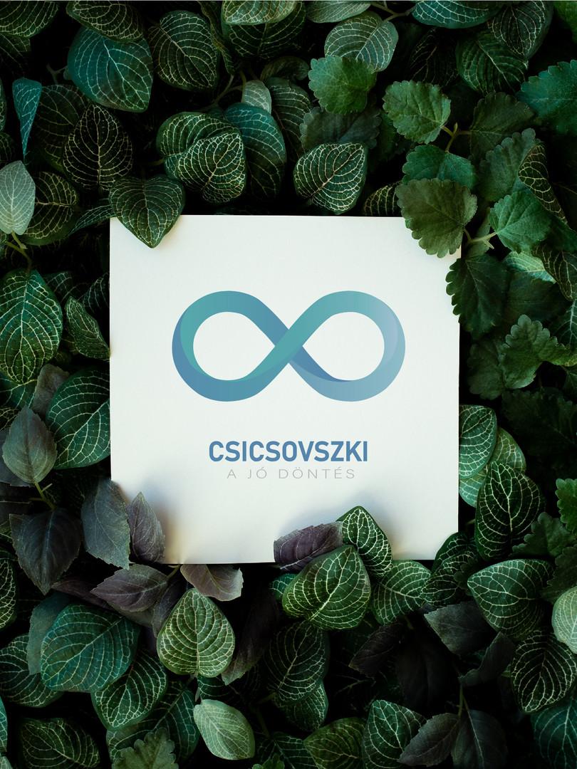 Csicsovszki | Logó Látványterv
