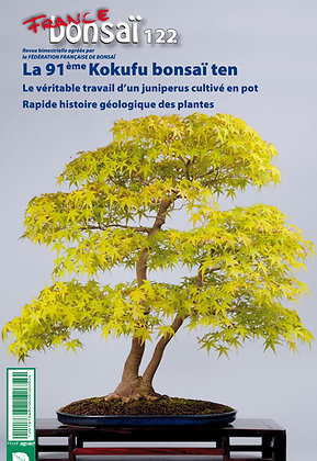 France Bonsaï Nº 122