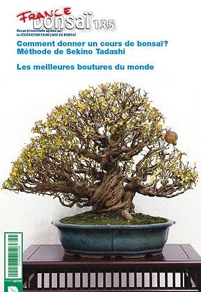 France Bonsaï Nº 135