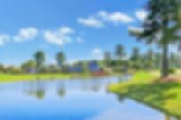 1022 Garden Club Way, Leland by Christian Cardamone Broker/Realtor