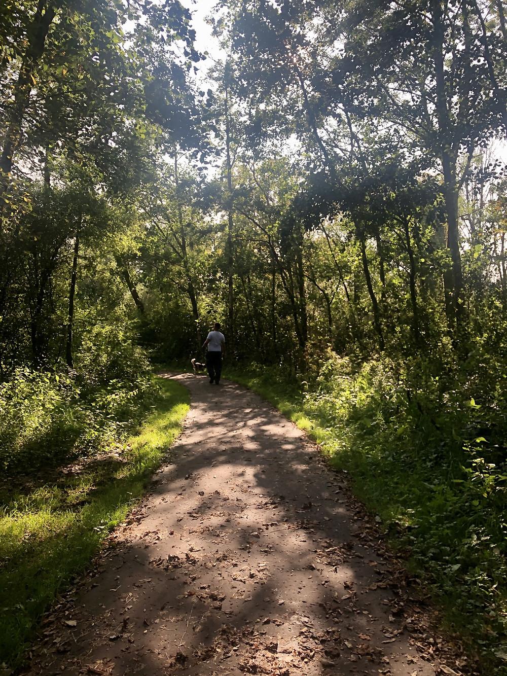 Callander Meadows path