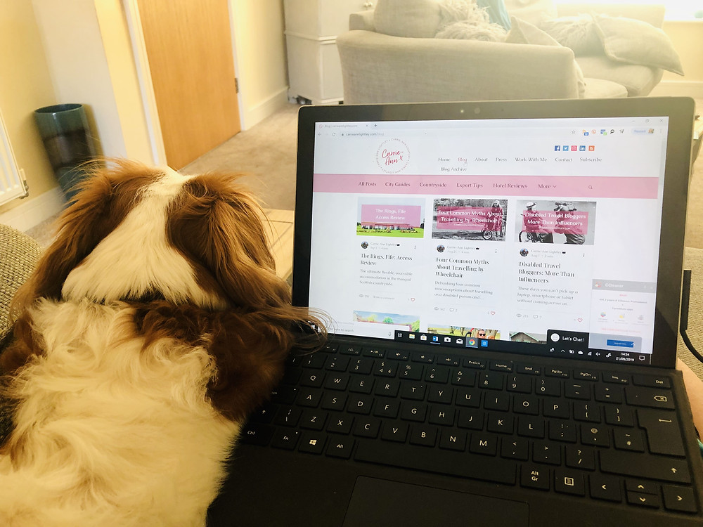 Carrie-Ann's laptop showing her blog listing page. Her dog is sitting next to the laptop