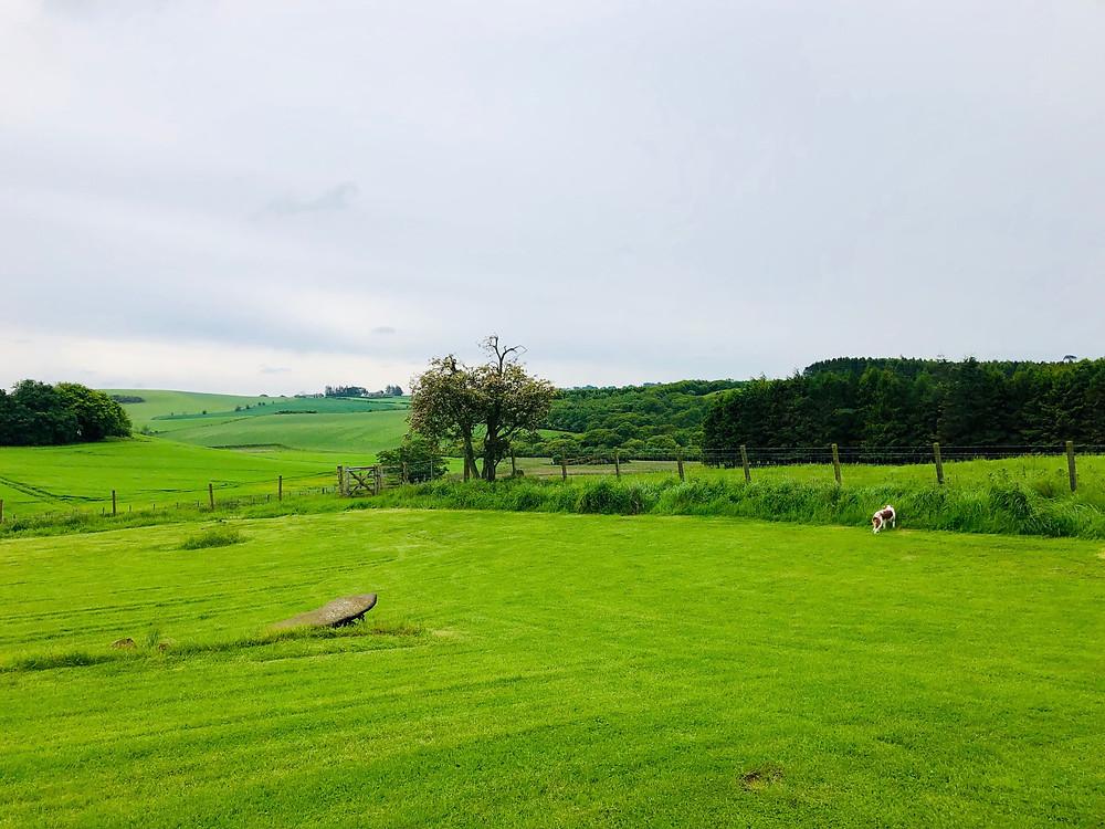 Scottish Countryside