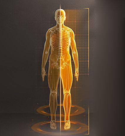 aurora-body-detection.jpg