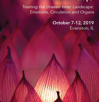 Inner Life: Reflections on 2019 Shiatsu Symposium at Heartwood