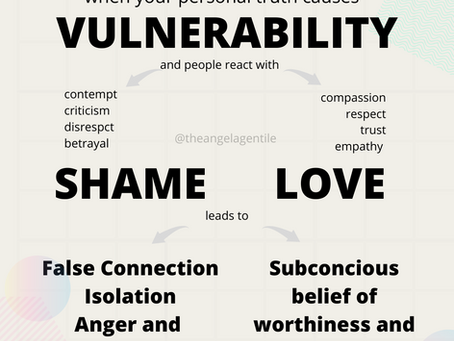 Vulnerability Cycle