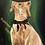 Thumbnail: May Liu Painting collection/Recreation