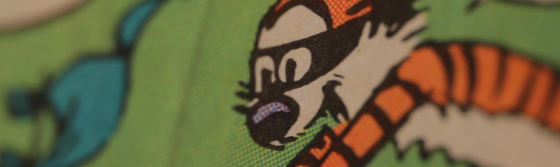 Hobbes playing Calvinball