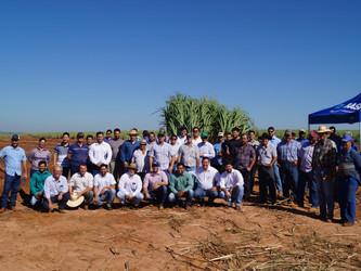 Dia de campo promovido pela AFCOP em parceria com a BASF e COOPERCITRUS, mostra as vantagens da MEIO