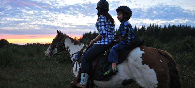 Équitation, cheval, randonnée
