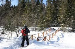 Sentier Chute-à-bull, randonnée