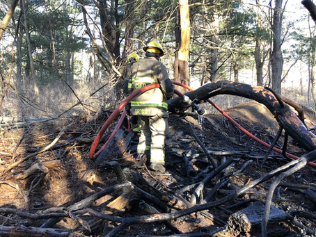 Brush Fire / Tareyton Park